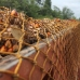 Sinar Mas, infamous Palm Oil company. Hundreds of Palm Oil trucks stranded outside our local partner