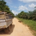 A truck carrying away palm oil fruit – one of hundreds of trucks we saw today